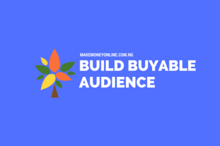 Steps to Build a Buying Audience Online in any Niche