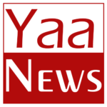 Make N2,000 Cash Writing an Article about YaaNews.com on your Blog